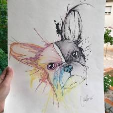 hera_french bulldog